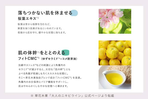 草花木果のHP「大人のニキビライン」の肌の活動サイクルの説明